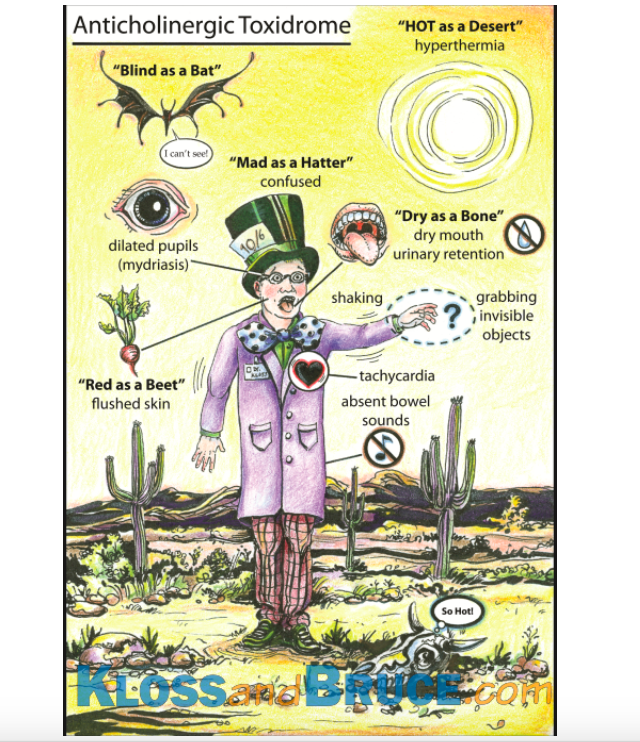 Anticholinergic Infographic (BrianandKloss.com)