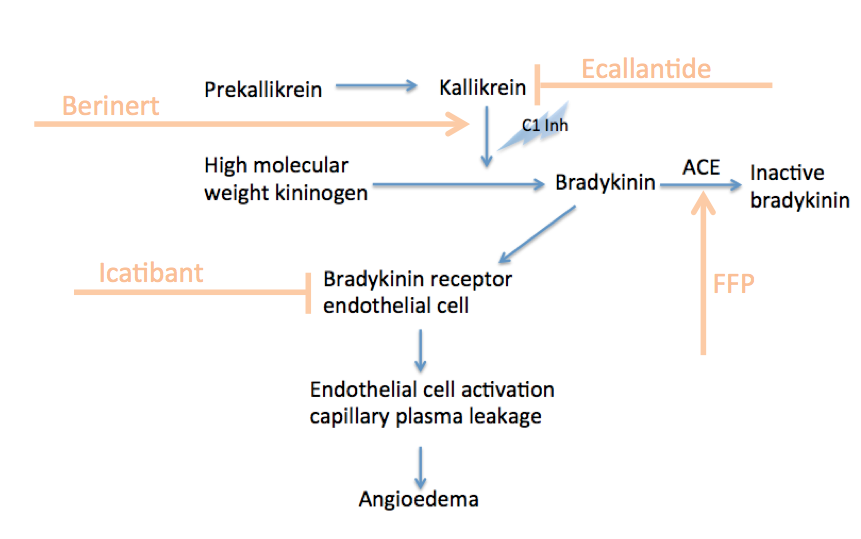Bradykinin Mediated Pathway Therapy