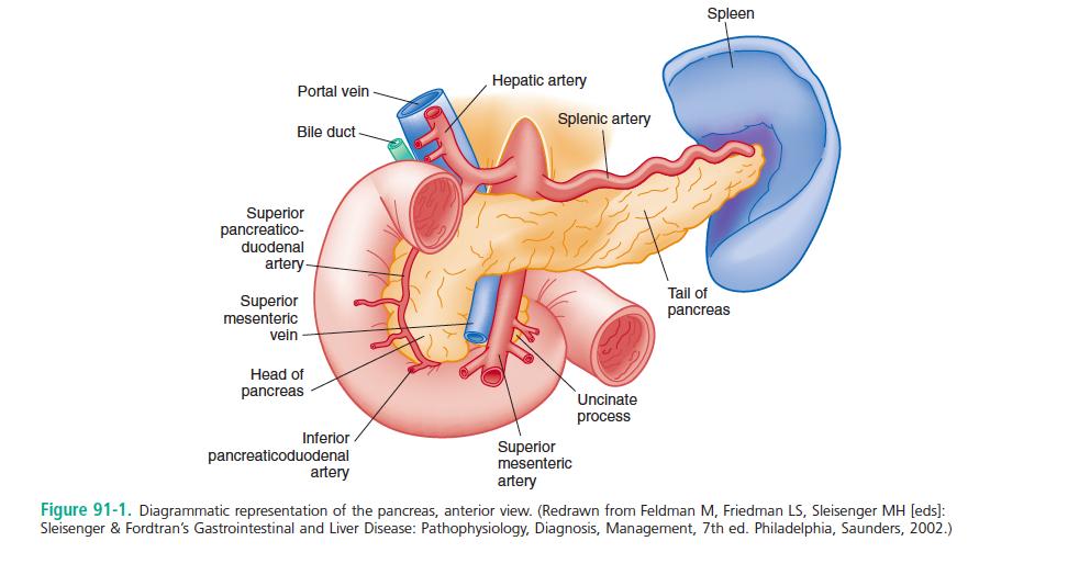 Acute Pancreatitis – Core EM