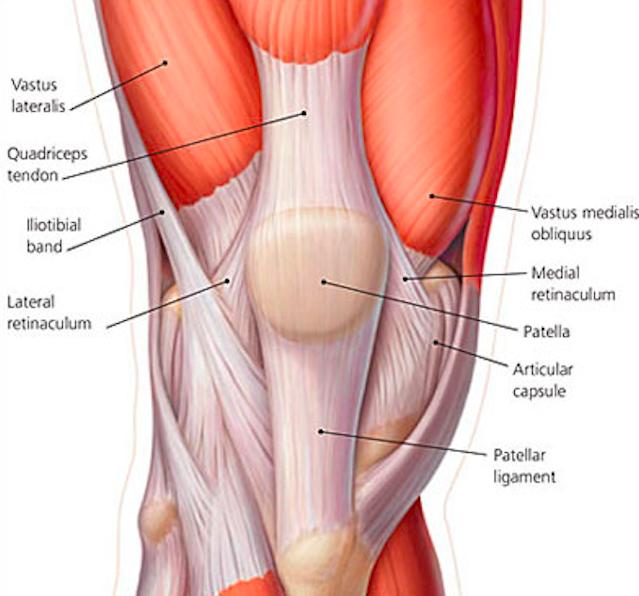 Quadriceps Tendon Rupture Core Em