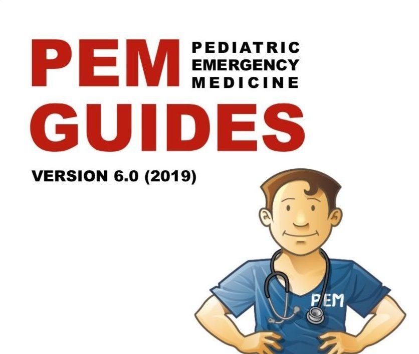 PEM Guides Version 6 0 (2019) – Core EM